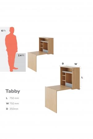 tabby-1