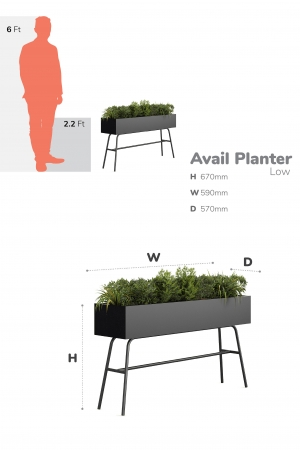 Avail-Planter-Low